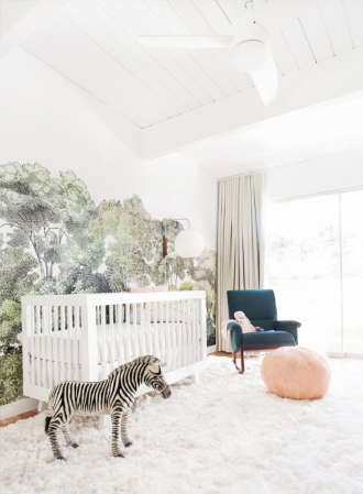 zebra in nursery